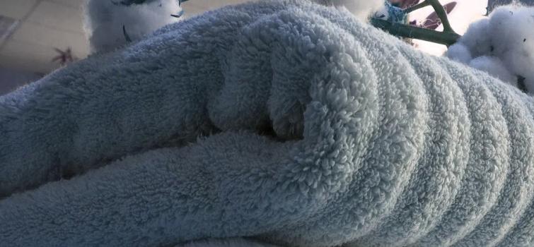 Zero Twist Towels Manufacturer Supplier Exporter Faisalabad